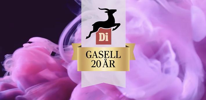 di-gasell-2019